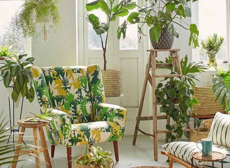 Стелажі і полиці для кімнатних рослин: види та приклади