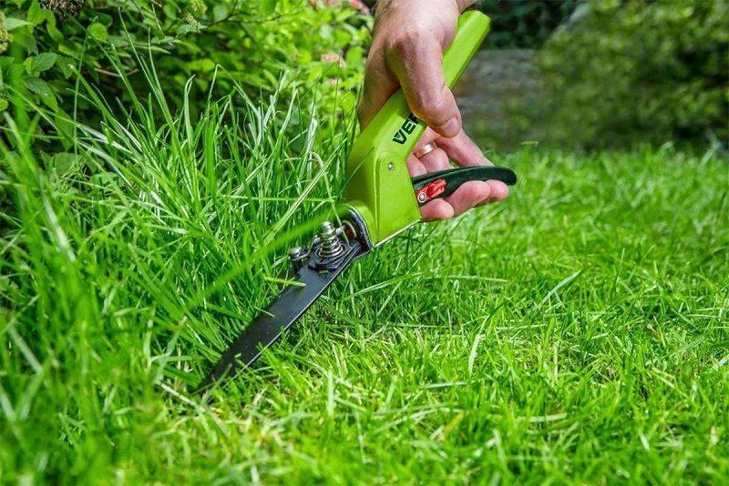 Ножиці для газонів: різновиди та особливості вибору
